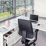 Ergonomic Master height adjustable desk